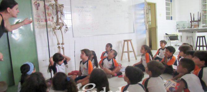 Esqueleto em sala de aula