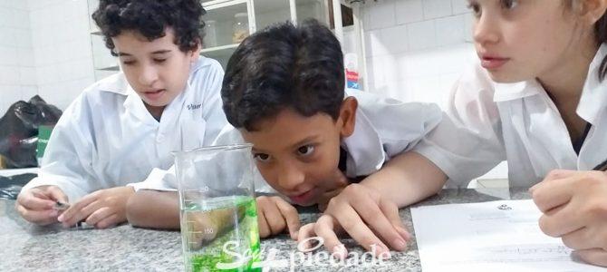 Prática laboratorial facilita o aprendizado de Química.